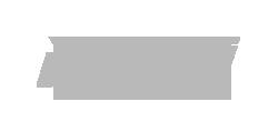 nyvoll logo gray