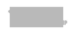 ppp logo gray