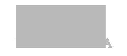 vokrug sveta logo grey